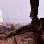 Presiden Joko Widodo meninjau lahan yang terbakar di Banjarbaru, Kalsel.