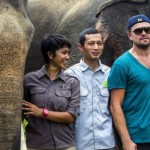 Leonardo DiCaprio and Sumatran Elephants at Mount Leuser National Park, Aceh, Indonesia on March 27, 2016.
