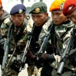Beberapa satuan TNI (Photo: © irwan.net)